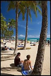 Couple under palm trees on Waikiki beach. Waikiki, Honolulu, Oahu island, Hawaii, USA ( color)